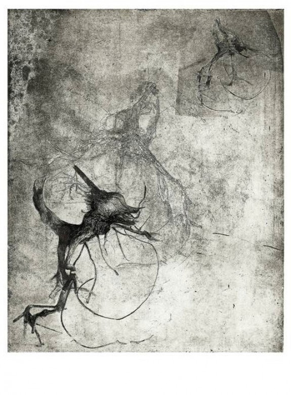 Insect etching